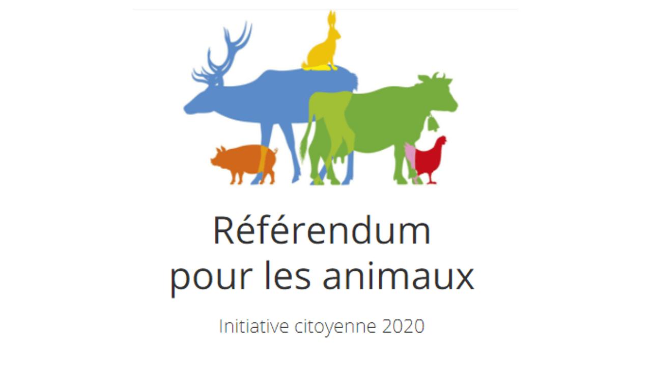 referendum animaux